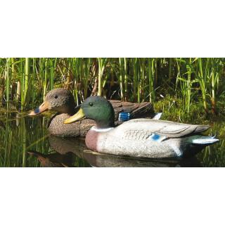 Lockvogel Ente