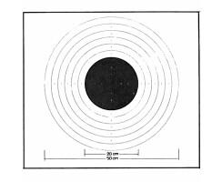 Ring-Scheibe 55x55cm mit Einsteckschlitzen