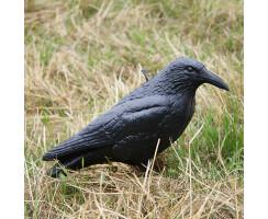 Lockvogel Krähe unbemalt
