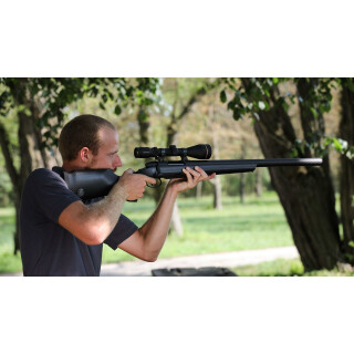 STEYR Breeze CL II Carbon