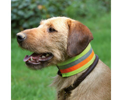 Reflektierendes Halsband für Hunde verschiedene...